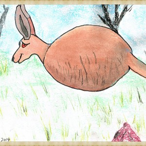 scanned roo spirit Framed